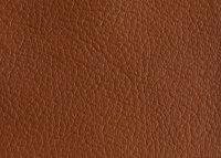 Universal, Rindsleder, pigmentiert, geprägt hazelnut